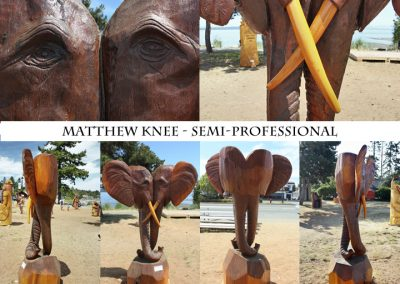 Matthew Knee Semi-Pro