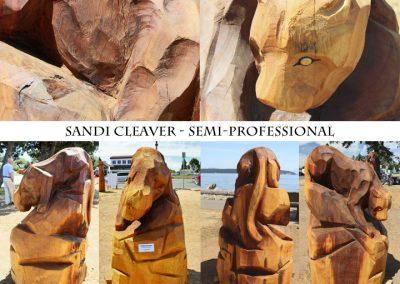 Sandi Cleaver Semi-Pro