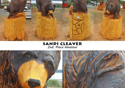 Sandi Cleaver WEB