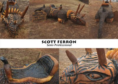 Scott Ferron web