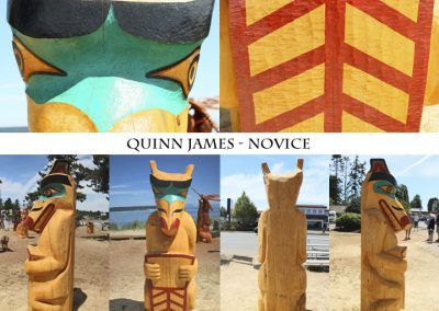Quinn James Novice